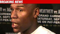 Mayweather Accused of Threatening Guards with Guns