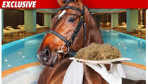 Kentucky Derby Champ -- Horsing Around at Day Spa
