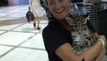 Snow Leopard UNLEASHED ... at the Airport!!