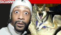 Katt Williams' Bodyguard Kills Dog in Bizarre Attack