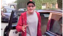 Charlie Sheen -- MAJOR Clue About New Sitcom