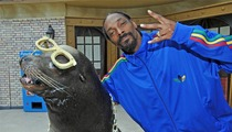 Snoop Dogg -- Nuthin' But a Sea Lion Thang