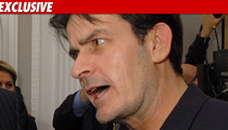 Charlie Sheen Plea Deal Down to the Wire