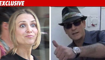 Charlie Sheen/Brooke Mueller Custody Agreement