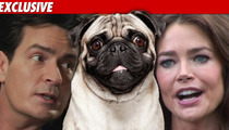 Charlie Sheen Sends Denise Threatening Email