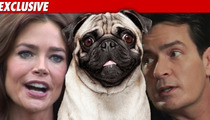 Denise Richards to Charlie Sheen:  Pug You!