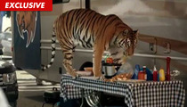 Tiger from HTC Vivid Phone Commercial -- Sorry, I Won't Eat Cheese!!!!