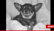 Osbourne Family Dog Martin Dies on Christmas