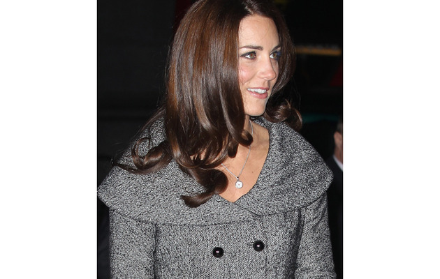 Duchess Kate Middleton's First Public Appearance Without Prince William