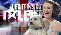 'Britain's Got Talent' Dog -- Fetches Million-Dollar Offers