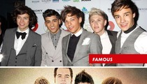 One Direction Sues One Direction Which Sued One Direction