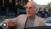 Larry David -- The Birthday Street Rap