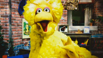 Big Bird Blasts Obama -- TAKE ME OUT OF YOUR ATTACK AD!