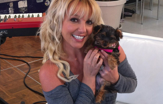 "Britney Spears Shows Off Her Adorable ""Baby Girl"""