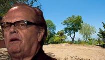 Jack Nicholson -- Wanna Buy the Dirt Where My House Burned Down?