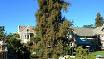 Playboy Mansion -- Bogus 911 Call ... NOT a 'Swatting' Prank