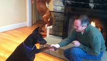 Tareq Salahi -- I'm Over Bitches ... So I Adopted a Male Dog