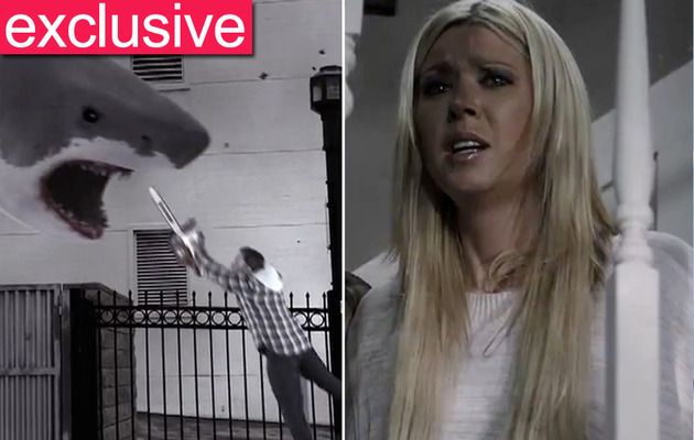 "Tara Reid: Don't Count Me Out of ""Sharknado"" Sequel!"