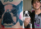 'Big Time Rush' Star Kendall Schmidt -- Check Out My Sissy Tattoo