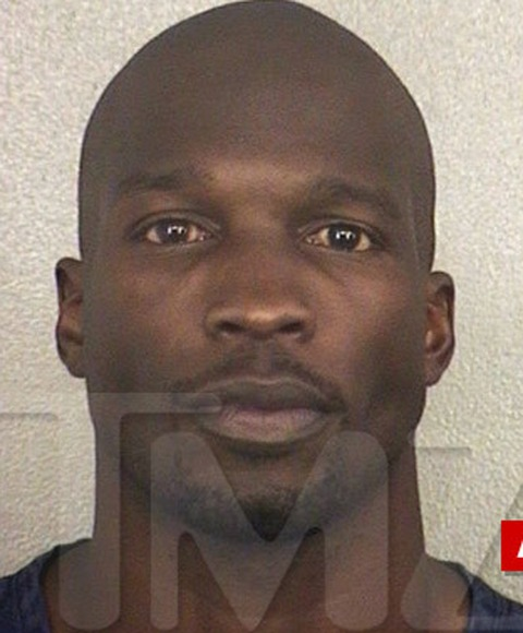 Chad Johnson was just arrested in Florida -- after a judge determined the ex-NFL star violated his probation stemming from his 2012 domestic violence bust