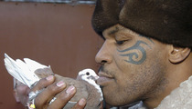 Mike Tyson Conspiracy -- The Government's Killing Our Pigeons!
