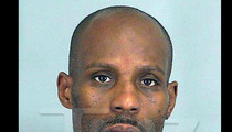 DMX -- Get Off the Road! Busted Behind the Wheel Again