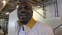 Akon -- Monogamy is Stupid