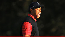 Tiger Woods Wins for the First Time In More Than Two Years