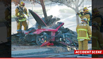 Paul Walker Crash -- Cops Summon Porsche Experts From Germany