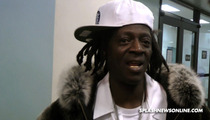 Flavor Flav -- I'm Throwing Myself At the Judge's Mercy [VIDEO]