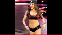 WWE Diva Nikki Bella -- I'm Getting in the Real Estate Biz