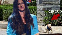 Alanis Morissette -- Screwed by the Law Over Stolen Dog