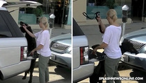 Jennie Garth -- Even Her Black Dog Gets Denied
