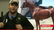 Wes Welker -- Allegations of Race Horse Deception