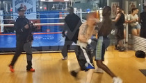 Champion Boxer Deontay Wilder KNOCKS OUT Internet Troll ... IN REAL LIFE [Insane Video]