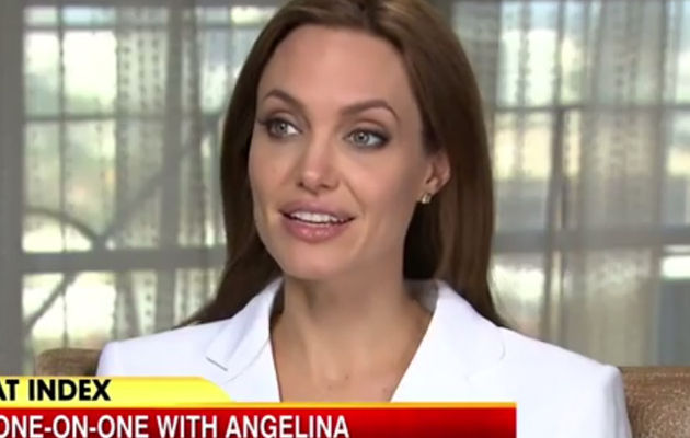 Would Angelina Jolie Ever Run For Office? Find Out!