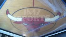 Michael Jordan -- Chicago Bulls Center Court Logo ... Is In My House!!!