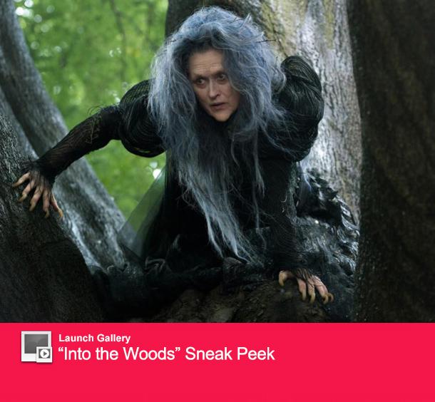 0731_woods_launch