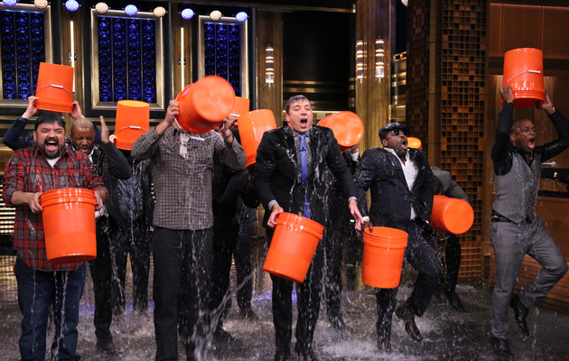 See Which Celebrities Have Promoted ALS Awareness With the Ice Bucket Challenge