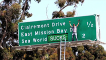 Steve-O -- Cops Investigating SeaWorld Stunt -- Prosecution Likely