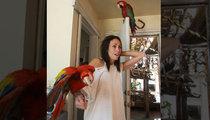 Heidi Fleiss -- Dirty Birds Terrorizing Ex-Girlfriend