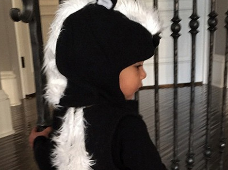 Kim Kardashian Posts Pic of North West's Adorable Halloween Costume!