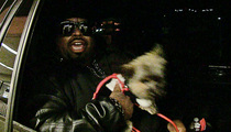 CeeLo Green -- It's About Time Bill Cosby Start Fighting Back