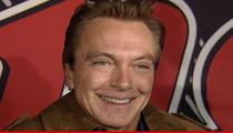 David Cassidy -- C'mon Get Happy ... I'm Rehabilitated!