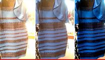 #TheDress -- Blue/Black, White/Gold ... Sales are Through the Roof!!!