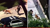 Lil Wayne's Miami Mansion -- Gunshots Reported, But Cops Give the 'All Clear'