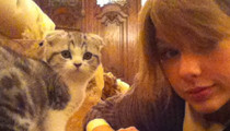 22 of Taylor Swift's Cattiest Moments -- Meow!