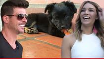 Robin Thicke -- Furred Lines ... Going Stupid 4 New Puppy