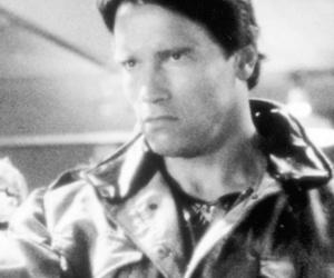 "Schwarzenegger, Hamilton & More -- See Your Favorite ""Terminator"" Stars…"