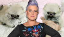 Kelly Osbourne -- Little Things Cost Big ... BIG Money!! (TMZ TV)